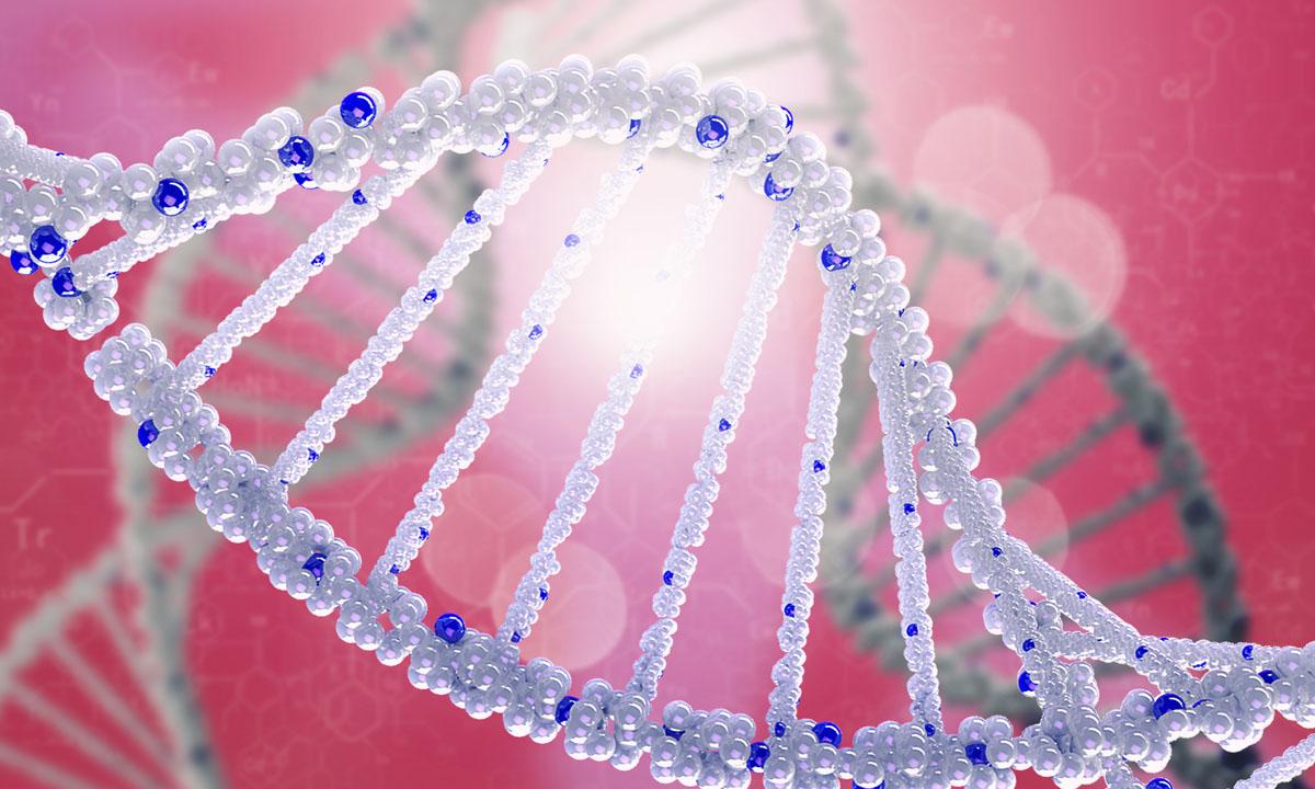 Korepetycje indywidualne – Biologia